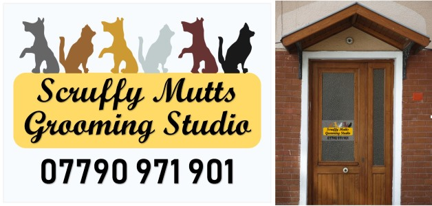 window decals scruffy mutts